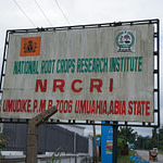 National Root Crops Research Institute Recruitment Form 2020/2021, Apply Now
