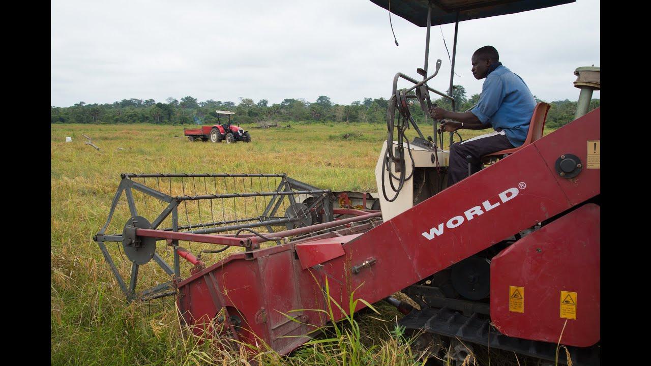 Agricultural Procurement Agency LTD Recruitment 2020/2021